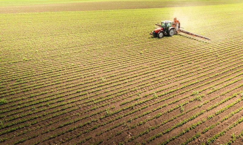ūkių sistemos reitingai po prekybos pabaigos
