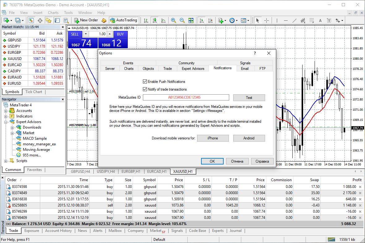metatrader 4 online platform ar pirkimo pasirinkimo sandoriai turi įtakos akcijų kainai
